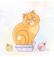cat in a box vector image