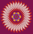 flower of life seed mandala vector image