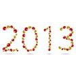 2013 ladybugs vector image