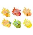 Fruits splash set of labels Fruit splashes drops vector image