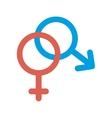 gender male female vector image