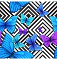 seamless pattern with blue butterfly black vector image