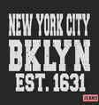 brooklyn new york vintage stamp vector image