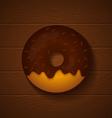 donut chocolate vector image