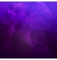 Abstract low poly dark purple bright technology vector image vector image
