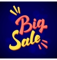 Big Sale calligraphic lettering vector image