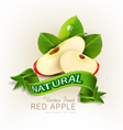 two slices of red apple with green leaves vector image