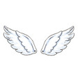 cute cartoon wings with white vector image