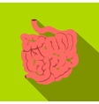 Small intestine flat icon with shadow vector image