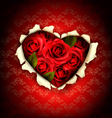 Valentine Heart Card Design Red roses and ripped vector image vector image