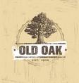 Oak tree logo design vector image