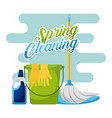 spring cleaning bucket mop gloves and cleaning vector image