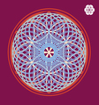 flower of life seed print vector image
