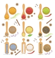 Powdered Spices Bowl And Corresponding Spoon Set vector image