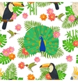 Bird Seamless Pattern vector image