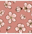 cherry blossom or sakura seamless background vector image