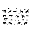 Silhouette of Wild and Domestic Animals Bird Black vector image