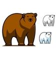 Funny cartoon bear mascot vector image vector image