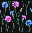 seamless pattern with colorful cornflowers vector image
