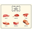 Different kind of meat products vector image