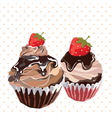 Delicious Strawberry and chocolate Cupcakes vector image