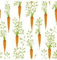 Carrots Freehand Drawing Seamless Pattern vector image