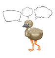 A small ostrich vector image vector image
