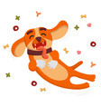 cute funny dog is jumping and flying from the dog vector image