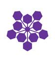 abstract hexagon cells vector image
