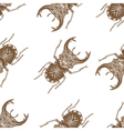 seamless pattern with beetle vector image