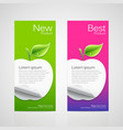 Brochure design apple vector image