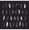 set of different hand drawn feathers on vector image