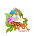 coconut cocktail in summer with garnish and straw vector image