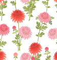 elegant seamless texture with chrysanthemums vector image vector image