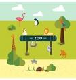 Animal and Zoo vector image