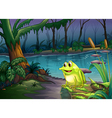 A frog above a trunk with algae vector image vector image
