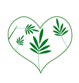 Fresh Green Leaves in A Heart Shape vector image