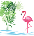 Tropical with flamingo vector image vector image