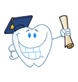 Graduate Tooth Holding A Diploma vector image