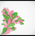 colorful flora background vector image