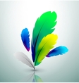 colorful feather design vector image