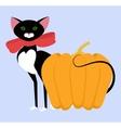black cat Halloween card vector image