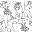 Geranium flowers buds leaves vector image