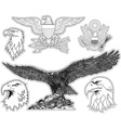 Set of US eagles Grayscale collection vector image