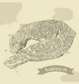 salmon fillet hand drawn vector image