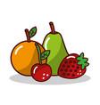 fruit orange pear strawberry cherry vector image