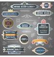 Vintage design elements stickers vector image vector image