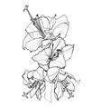 hibiscus pen drawing vector image