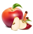 Red apples with green leaves and cinnamon vector image vector image