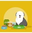 Pet food in bowl bone meal for dogs eating vector image